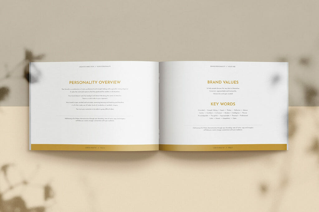 Career Practic brand identity and brand values